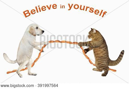 A Dog And A Cat Are Playing In Tug Of War. They Pull A Sausage Instead Of A Rope. Believe In Yoursel