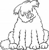 Cartoon Illustration of Funny Purebred Newfoundland Dog or Labrador Doodle or Briard for Coloring Book poster