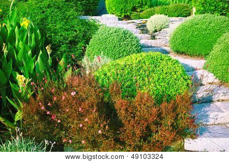 Landscaping in the garden