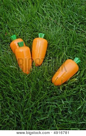 Carrots In The Grass
