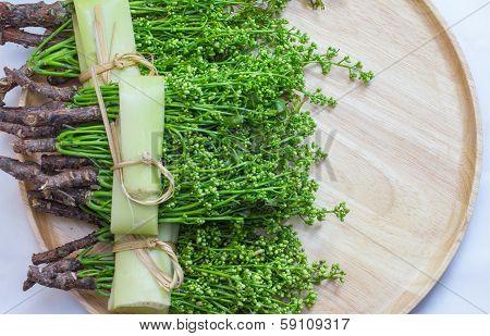 Thai Food Siamese Neem Tree