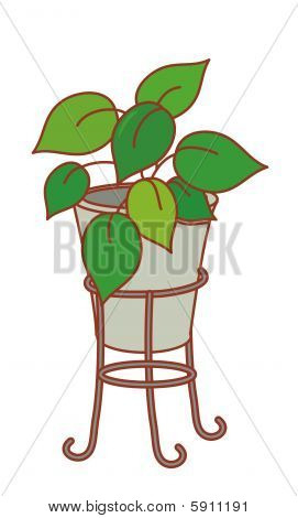 a pot of green plants on a ferric shelf poster