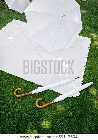 Picnic with white Accessoires