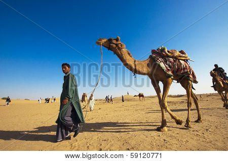 Camel Riding, Thar Desert