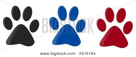 Three Colorfull Paw Print
