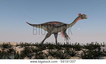 walking gigantoraptor