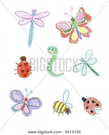 Kid's Illustration Of Insects
