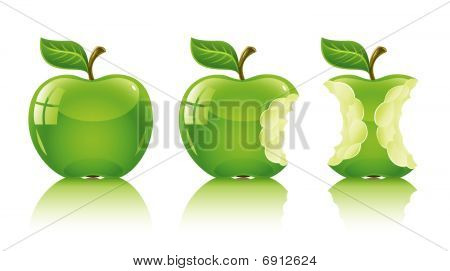 Green Nibbled Apple With Leaf