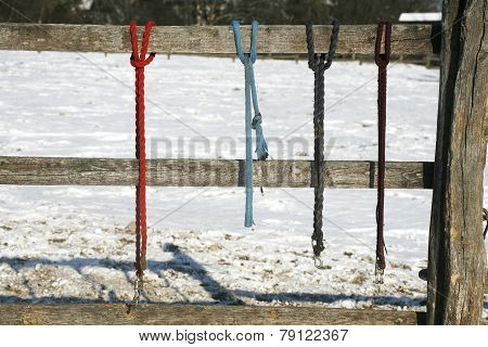 Winter Corral Fenced With Equestrian Equipment
