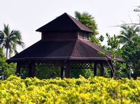 hut in the parks