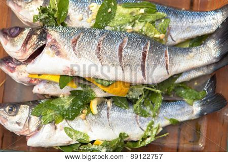 prepared sea bass fish for cooking poster