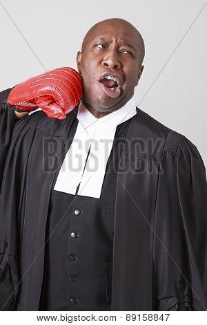 Punching A Lawyer