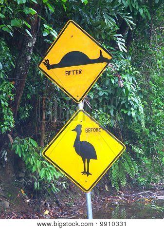 Cassowary sign in the Daintree Rainforest of Queensland Australia. poster