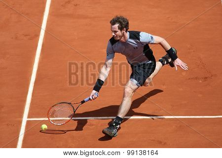 Grand Slam champion Andy Murray during third round match at Roland Garros 2015