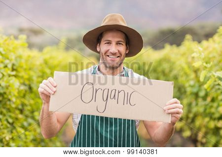 Young happy vintner holding an sign in the grapes field