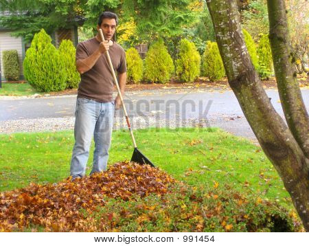 Man Doing Yardwork