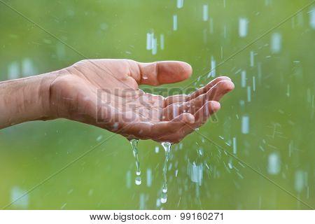 Hand And Rain Water