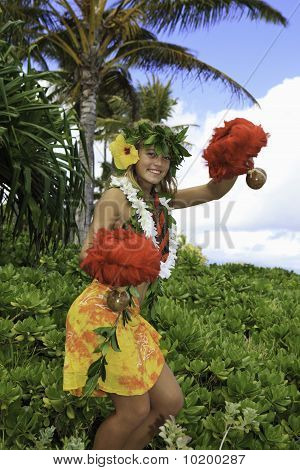 hawaiian hula