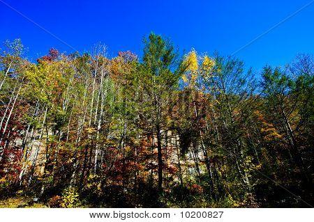 Blue Ridge Parkway Fall Colors