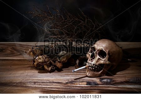 Still Life Smoking Human Skull With Cigarette On Wooden Table, People Smoke Cigarette Look Like Tryi