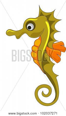 Seahorse, Gold and Orange, vector illustration