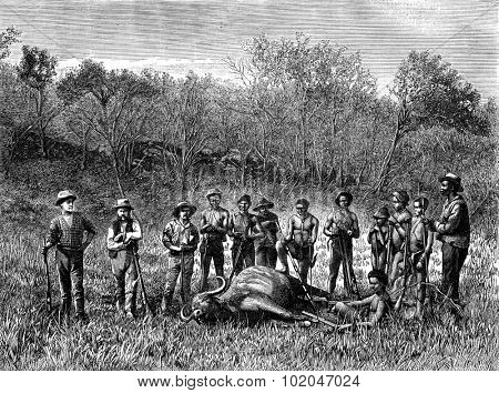 The Boers. Hunting horse in the Transvaal, vintage engraved illustration. Journal des Voyage, Travel Journal, (1880-81).