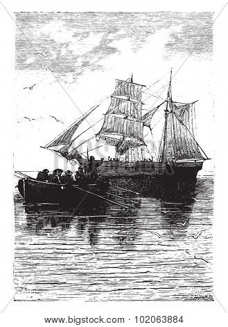 Sleep well! cried the last time the captain, vintage engraved illustration.  Jules Verne, a 15 year old captain.