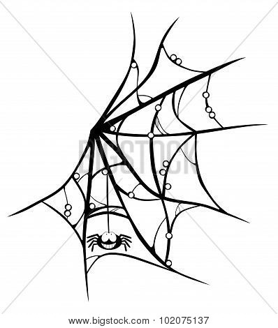 Cartoon Cobweb With Smiling Spider Isolated On White