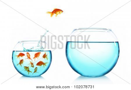 Goldfish jumping from glass aquarium, isolated on white