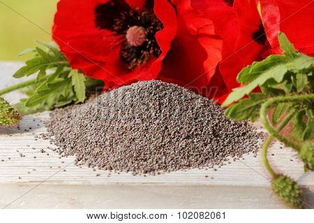 poster of Pile of poppy seeds and poppy flowers
