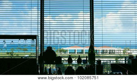 Venetian blind lifted and blue sky in restaruant poster
