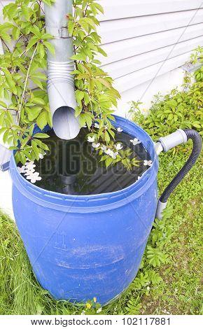 drain for rain water