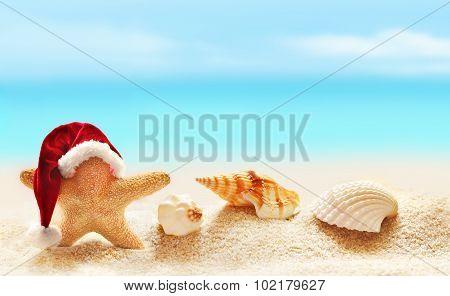 Starfish In Santa Hat On Summer Beach