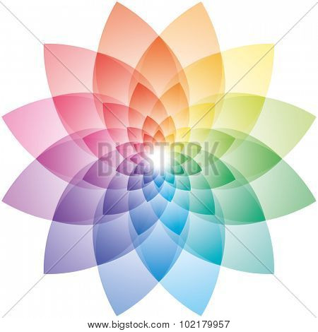 Beautiful Lotus Flower Color Wheel. Vector EPS10.