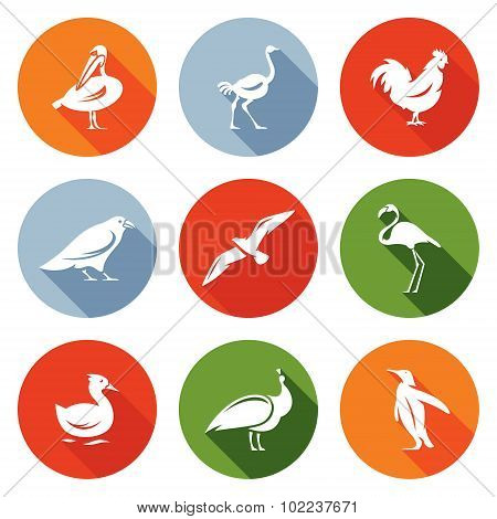 Birds Icons Set. Vector Illustration.