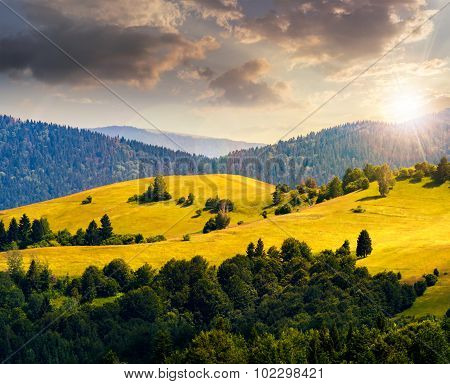 Hills With Meadow Among Mountains  Forest At Sunset