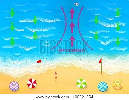 Ocean rip current scheme vector illustration