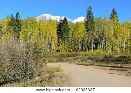 landscape view of the rural road through colorful alpine scenery during foliage season at Kebler and Ohio Passes poster