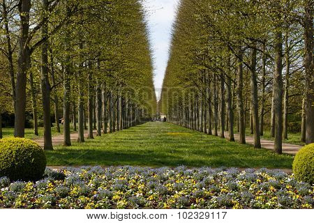 French garden in Celle
