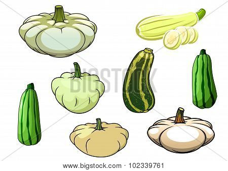 Pumpkin, zucchini and pattypan squash