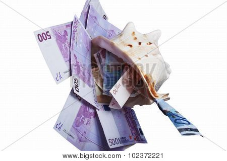 banknotes are in denominations of 500, 20,10, euros are in a sea