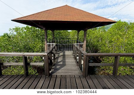 Indonesian Landscape With Walkway