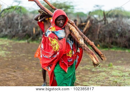 Massai man collecting firewood