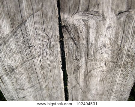 The Weathered Wood