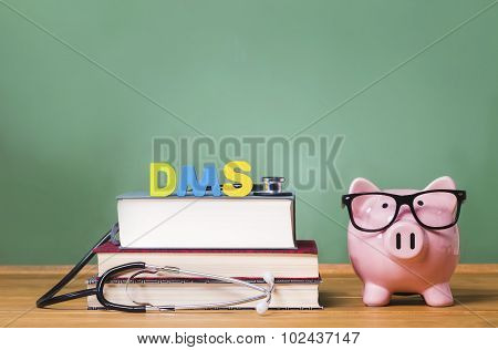 Diagnostic Medical Sonography Theme With Pink Piggy Bank