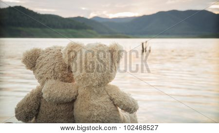 Teddybears enjoying the view