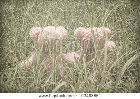 Teddybears at the park in the grass