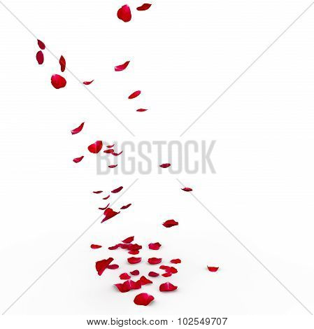 Red Rose Petals Are Flying To The Floor