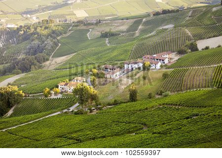 Langhe Hilly Region: viewpoint of La Morra (Cuneo). Color image