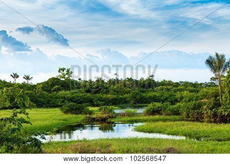 Stunning landscape in Amazon, Brazil